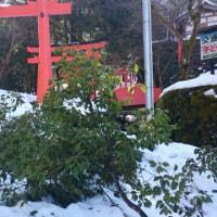 青空☀と雪景色