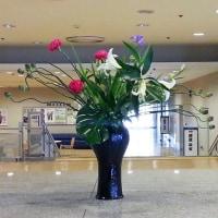 ・町田市民ホール・ロビー展示(タンチョウアリアム)