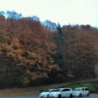 落葉の絨毯の庚申山へ☆下の下