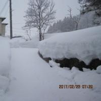 今季二月の降雪量は凄かったですね・・・ブログ更新しました!
