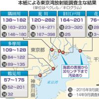 最も高い濃度を検出したのは、印旛沼につながる花見川。1キログラム当たり452~789ベクレル 東京湾河口部汚染