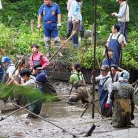 菩提樹池の掻掘り