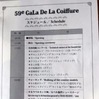 美容技術コンクール【第59回 ガラ・ド・ラ・コワフュール】