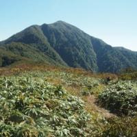 秋の小荒島岳