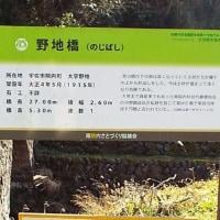 野地橋 (大分県宇佐市院内)