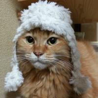 憧れの耳あて付き帽子♪ Handmade-64