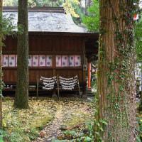 小雨に色彩豊か 冠岳神社周辺の紅葉 2016/12/04 (鹿児島)