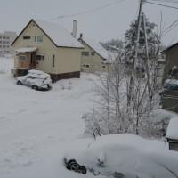 積雪30cm!