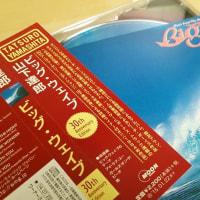 山下達郎氏の「ビッグ・ウエイブ」30周年アニバーサリー盤!