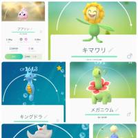 Pokémon GO   進化アイテム