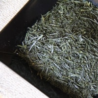 四国の新茶