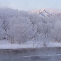 """更別村の""""霧氷""""撮像ポイントに行ってみました。"""