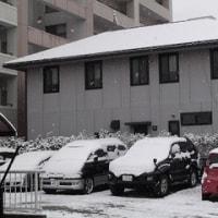 雪景色に大慌て