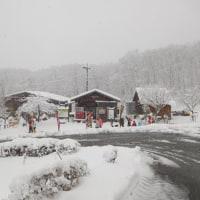 祝☆スキー場OPEN!