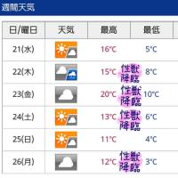 hpp112いけない奥さま☆ななせが送る(≧∇.≦)/【週間天気予報】です