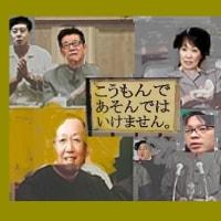 2017.3.28 参議院決算委員会