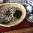 夏 蕎麦 四季の風