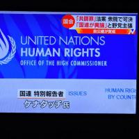 5/24 J カラタチって人、国連で任命されているそうよ