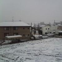 太平洋側に大雪