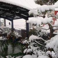 日本各地昨日は大雪・・こちらは朝から晴天