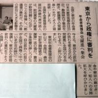 「東京から政権に審判を」年金者組合後援会