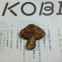 キノコの箸置き❤着色