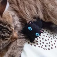 今日のおまけ・・・猫に猫^ - ^