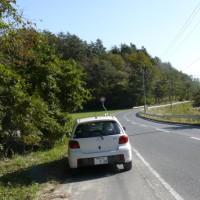 一関市東山町のアワコガネギク(泡黄金菊) 2016年10月23日(日)