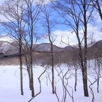 雪の観音沼へ