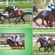 スプリンターズS GⅠ (登録馬による)勝馬のコメント!