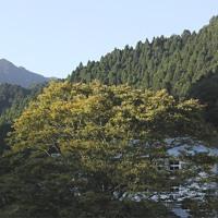 【山】姫路市 雪彦山、鉾立山