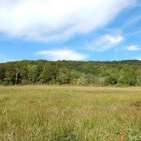 群馬県の橘山、赤城山、玉原高原を巡ってきました