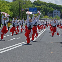 2017ひろしまフラワーフェスティバル 170503~05