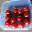 我が家で取れたトマト