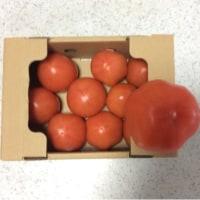 ネットスーパーのトマト