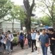 2016年7月23日 弟が東京でグンちゃんと曹禺(^○^)