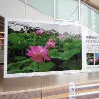 JR千葉駅の新しい入口 千葉公園口
