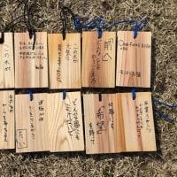彩の森づくりし「記念植樹祭」