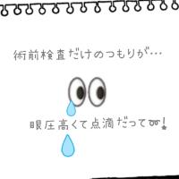 まただぁ~😫