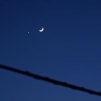 月と金星(冬の夜空が好き)