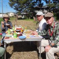 サツマイモの掘り上げ、今年は少ない収穫量