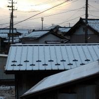 ハタハタのアフィージョ春菊添えカナッペ♪初雪の朝