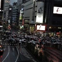 渋谷スクランブル交差点の不思議