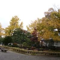 岡崎で再会