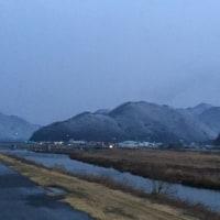 雨上がりの早朝散歩♪