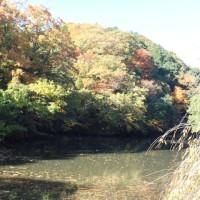 ぶらり旅・西山荘(西山御殿跡)①(茨城県常陸太田市)
