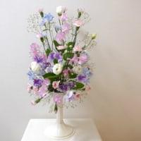 春の花でオーバルレッスン♪