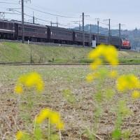 レトロ日光号(3)/東北本線を北上する回送列車
