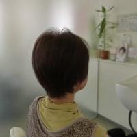 抗がん剤治療が終わって髪が生えてきたとき、いつウィッグを外そうかな?