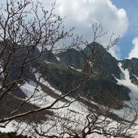 中央アルプス駒ケ岳ロープウエイに乗って、千畳敷カールに行って来ました